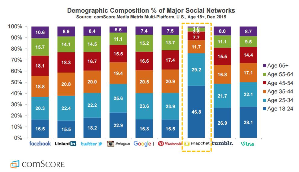 demographic usage social network